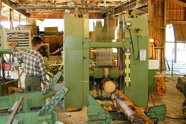 Birrerholz Holzbearbeitung Arbeit am Gatter