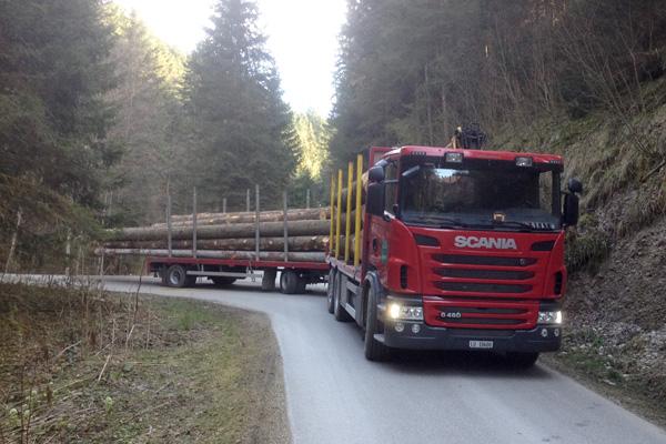 Birrer Holz AG | Transporte | Langholzwagen